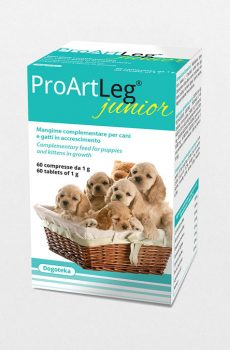 ProArtLeg Junior