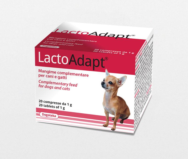 LactoAdapt